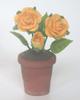 黃色玫瑰花盆
