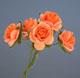 橙色玫瑰花(大)-5朵1組