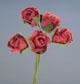 紫紅色玫瑰花(中)-5朵1組