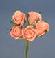 粉橘色玫瑰花(中)-5朵1組