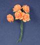 橘色玫瑰花-大(5朵/組)