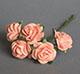 粉橘色玫瑰花(特大)--5朵/束