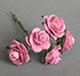 紫色玫瑰花(特大)--5朵/束