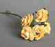 黃色玫瑰花(特大)--5朵/束