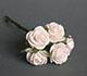 白色玫瑰花(特大)--5朵/束