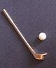 高爾夫球桿+小白球